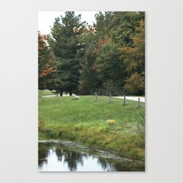 Farming Beauty! Canvas Print