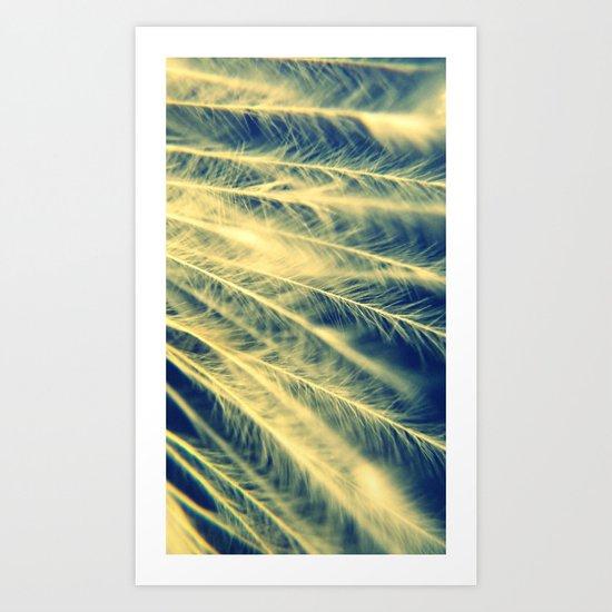 Afterfeathers Art Print