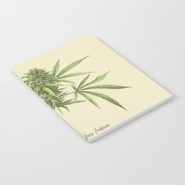Vintage botanical print - Cannabis Notebook