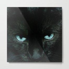 Black Cat in Turquoise - My Familiar Metal Print