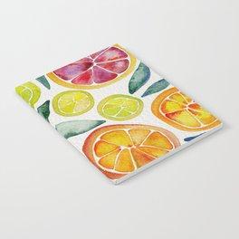 Sliced Citrus Watercolor Notebook