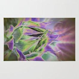 Sunflower Bud Abstract Rug