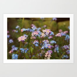 Falling in love with the flowers Art Print