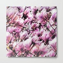 wild magnolia Metal Print