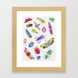 Colorful Bugs and Beetles Collection Framed Art Print