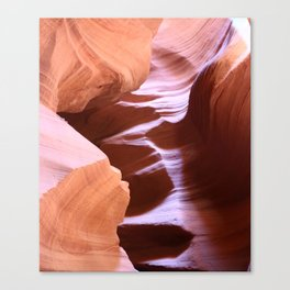 Antelope Colors Abstract Sandstone Waves Canvas Print
