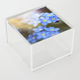 Don't Forget Me no.3863 Acrylic Box