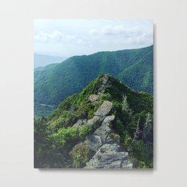 Chimney Tops Metal Print