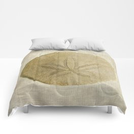 Sand Dollar Comforters
