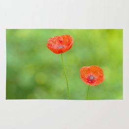 Two red poppies with water drops Rug