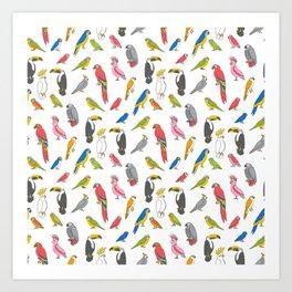 Tropical birds jungle animals parrots macaw toucan pattern Art Print