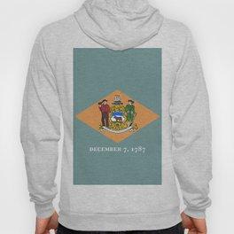 Delaware State Flag Hoody