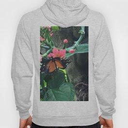 Fluttering Butterfly Hoody