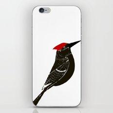 Birds- wood pecker iPhone & iPod Skin