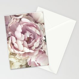 Roses, Pink Roses, Pastel Roses, Cottage Chic Roses Stationery Cards