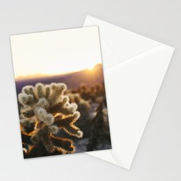 Daybreak at the Cholla Cactus Garden Stationery Cards
