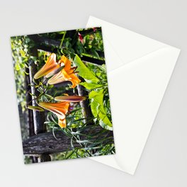 Orange Meadow Lillies Stationery Cards