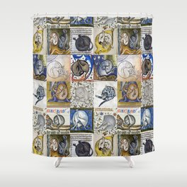 Medieval Cats Licking Their Butts Shower Curtain