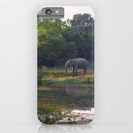 Elephant drinking on the green plains of Yala national park | Sri Lanka travel photography iPhone Case