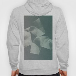 Abstract forms 15 Hoody