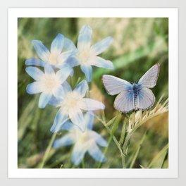 Butterfly :: Blue Sky Wings Art Print