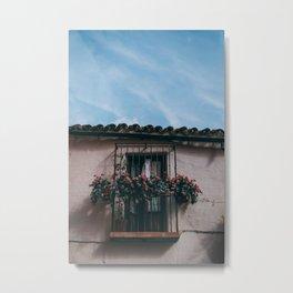 Spanish roses Metal Print