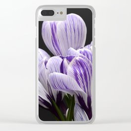 Spring Crocuses on a Black Background Clear iPhone Case