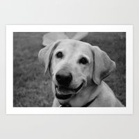 patrick Art Prints featuring Patrick by Dottie