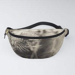 Beautiful thistle growing wild and sepia texture Fanny Pack