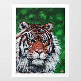 Sumatran Stripes Art Print