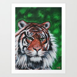 Sumatran Stripes Art Print