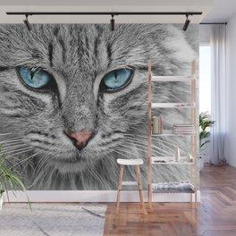 Cat Look Wall Mural
