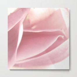 magnolia petals /Agat/ Metal Print