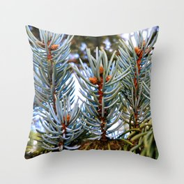 Blue Spruce Spring Growth 2 Throw Pillow
