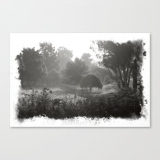 Foggy Path Canvas Print