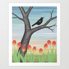 red winged blackbird and tulips Art Print