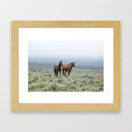 Wild Horses - Steens No. 1 Framed Art Print