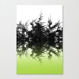 Conifer Lime Canvas Print