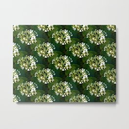 Hills-of-snow hydrangea pattern Metal Print
