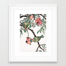 Pomegranate and Lovebirds Framed Art Print
