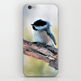 Chickadee Against the Wind iPhone Skin