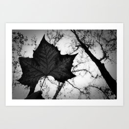 autumn time! Art Print