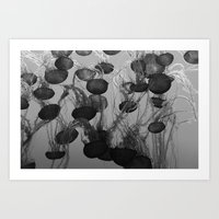 jelly fish Art Prints featuring jelly fish by anjastensrud