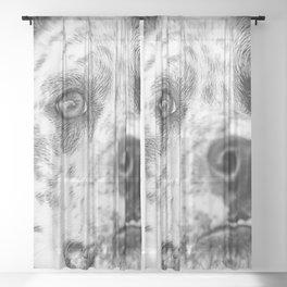 Dalmatian 5 Sheer Curtain