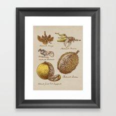 Steampunk Fruit  Framed Art Print
