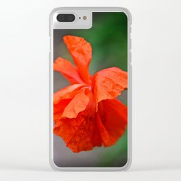 Red Punch Clear iPhone Case