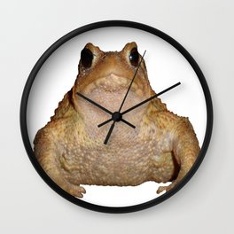 Bufo Bufo European Toad  Isolated Wall Clock