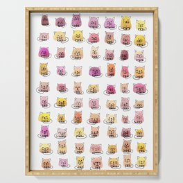 70 moods of cats Serving Tray
