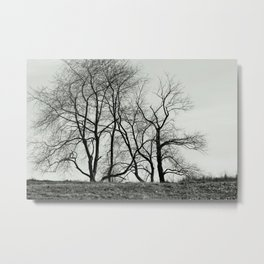 Withering Heights Metal Print