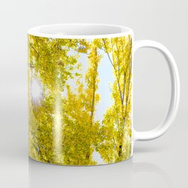 Sunlight Filtering through Beautiful Yellow Fall Foliage at Lake Cuyamaca, California Coffee Mug